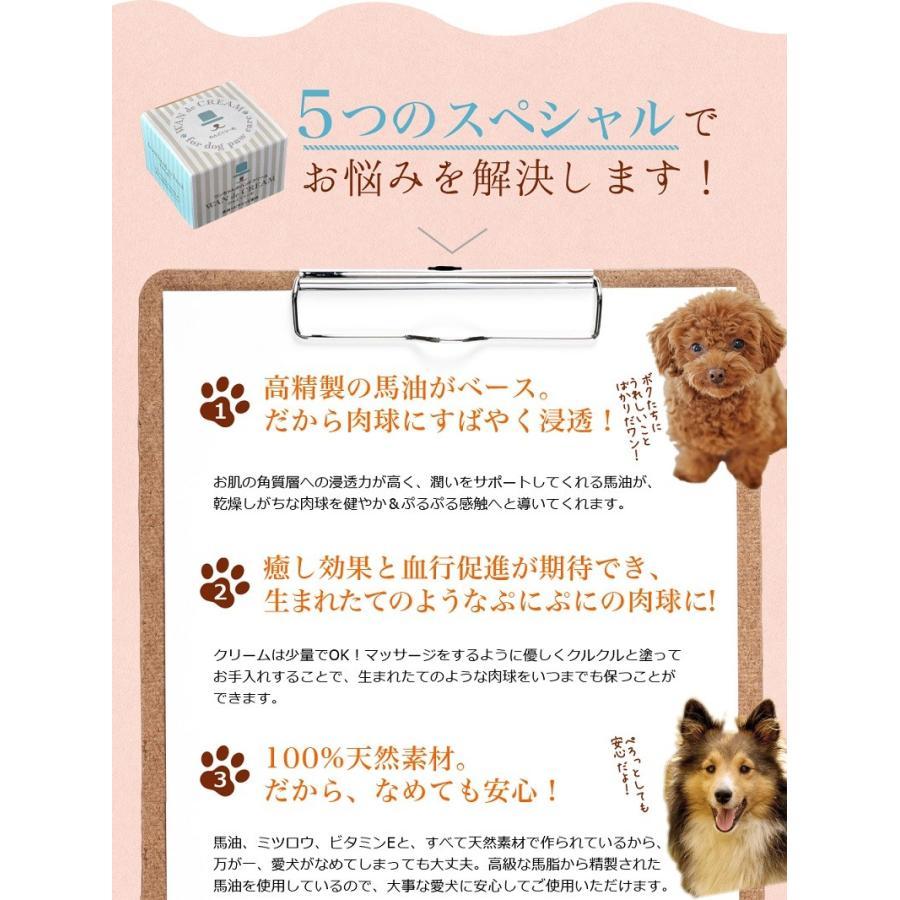 わんどくりーむ 100% 天然素材 肉球ケアクリーム 30ml WAN de CREAM キャプトスタイル CAPT.STYLE 肉球保護 犬 猫 ペット 用品 保湿 皮膚 肌 手 足 軟膏|oremeca|07