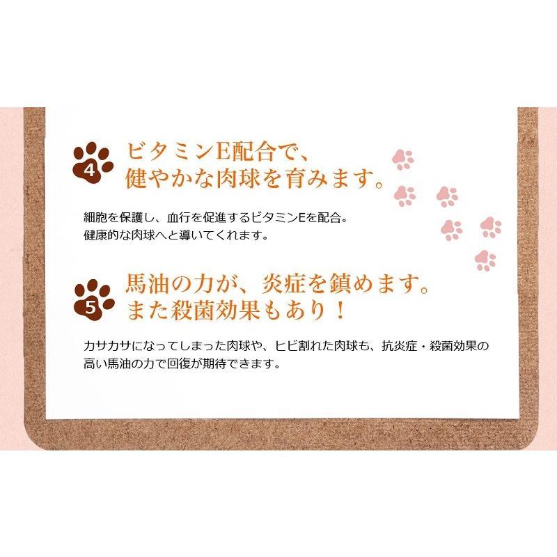 わんどくりーむ 100% 天然素材 肉球ケアクリーム 30ml WAN de CREAM キャプトスタイル CAPT.STYLE 肉球保護 犬 猫 ペット 用品 保湿 皮膚 肌 手 足 軟膏|oremeca|08