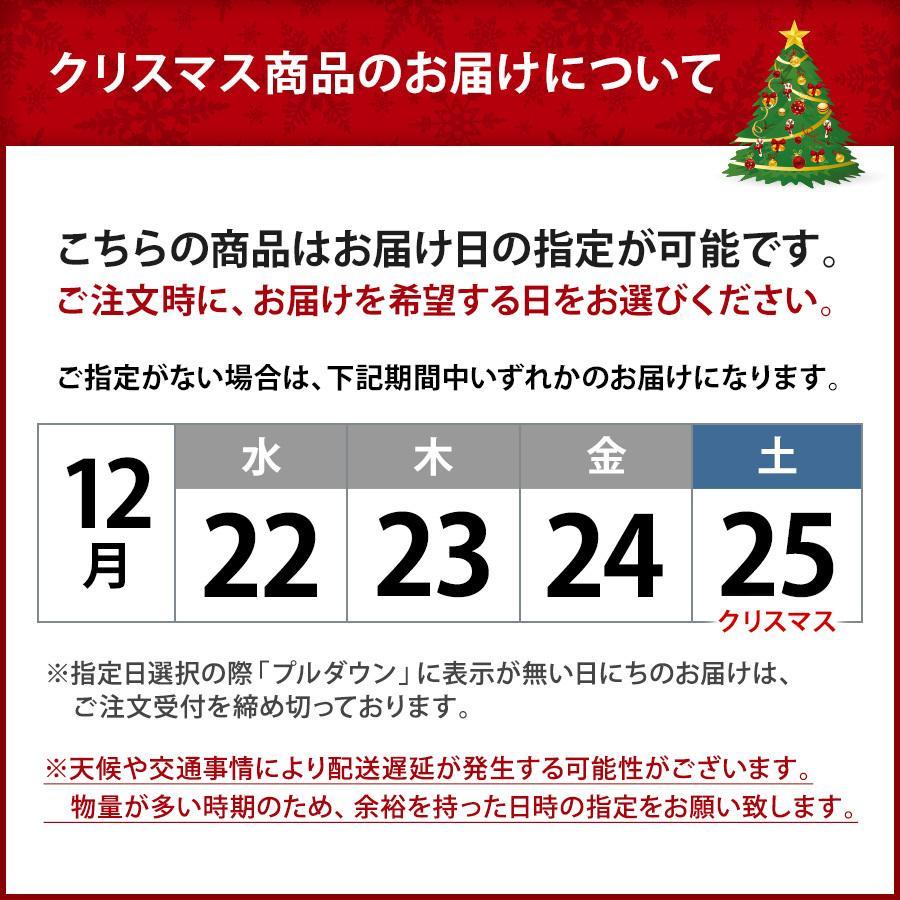 クリスマスケーキ 2020 半熟 ガトーショコラ 5号 送料無料 チョコレート Xmas ケーキ チョコ 予約 宅配 パーティー お取り寄せ ギフト プレゼント|organic|10