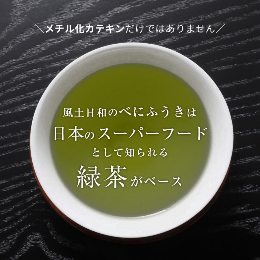 べにふうき茶 緑茶 粉末 粉茶 静岡産 べにふうき 80g 送料無料 organickitchen 11