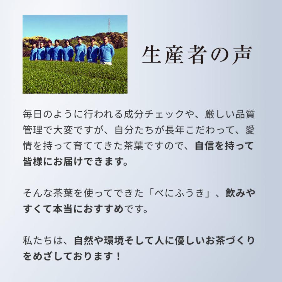 べにふうき茶 緑茶 粉末 粉茶 静岡産 べにふうき 80g 送料無料 organickitchen 16