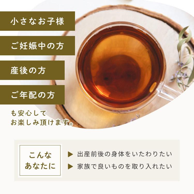 国産 ごぼう茶 2.5g 50包 ごぼう100% 九州産 ティーパック 送料無料 OITA30CP_2020_飲料|organickitchen|11