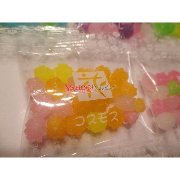 【メール便送料無料】業務用菓子問屋GGマルタ食品 100袋 個包装 金平糖×1袋|osaka|05