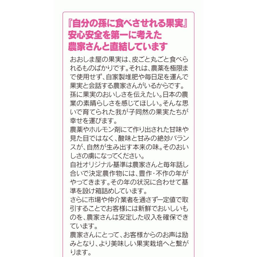 【初回限定】<12月上旬より出荷>長野 蜜入りサンふじりんご 送料無料 2kg 大小混合(5玉から9玉前後)果物 大嶌屋(おおしまや)|oshimaya-1991|11