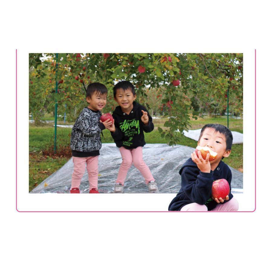 【初回限定】<12月上旬より出荷>長野 蜜入りサンふじりんご 送料無料 2kg 大小混合(5玉から9玉前後)果物 大嶌屋(おおしまや)|oshimaya-1991|12