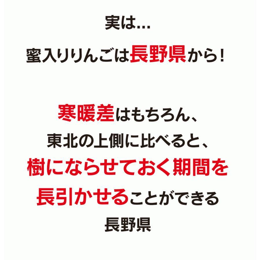 【初回限定】<12月上旬より出荷>長野 蜜入りサンふじりんご 送料無料 2kg 大小混合(5玉から9玉前後)果物 大嶌屋(おおしまや)|oshimaya-1991|05
