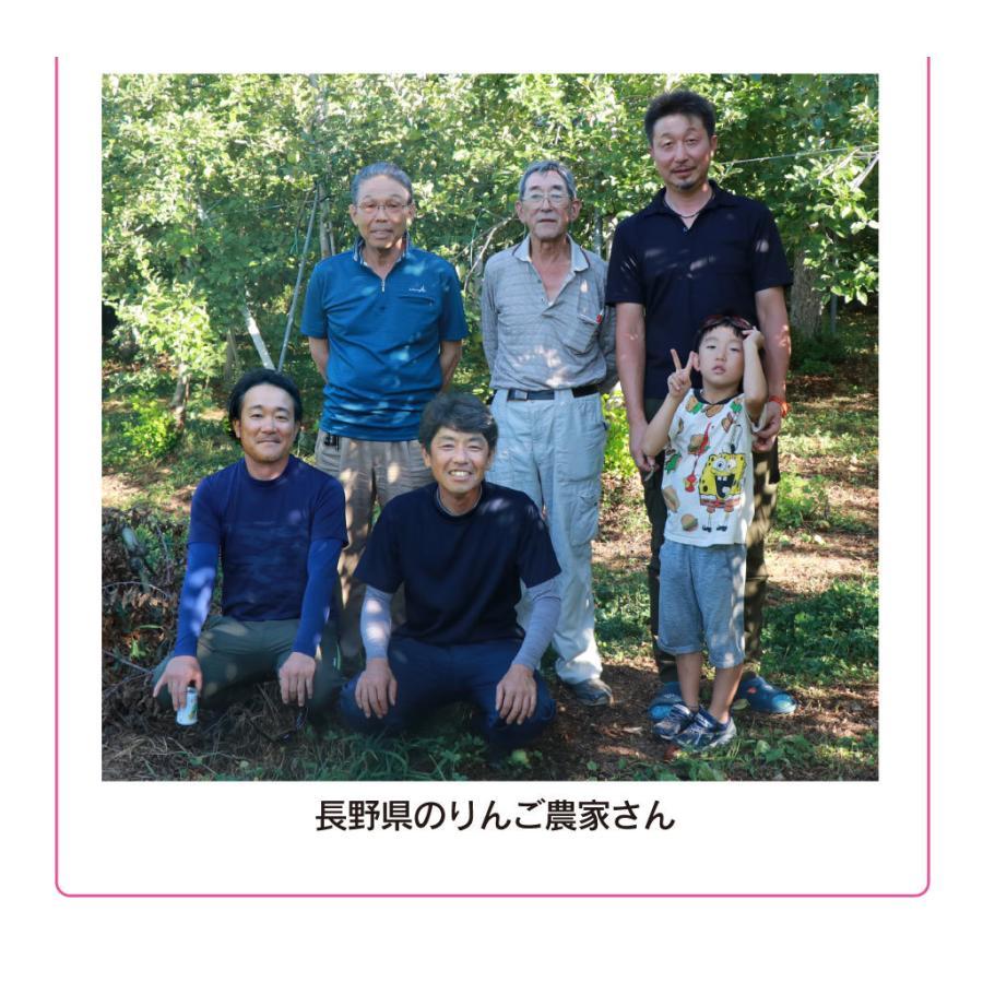 【初回限定】<12月上旬より出荷>長野 蜜入りサンふじりんご 送料無料 2kg 大小混合(5玉から9玉前後)果物 大嶌屋(おおしまや)|oshimaya-1991|09