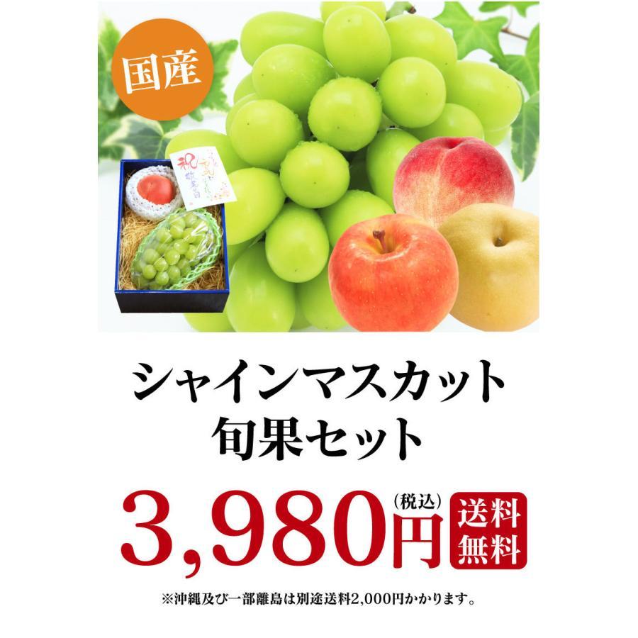 シャインマスカット旬果セット送料無料フルーツギフト果物<お届け:2021年9月14日〜9月19日着>大嶌屋(おおしまや)|oshimaya-1991|11