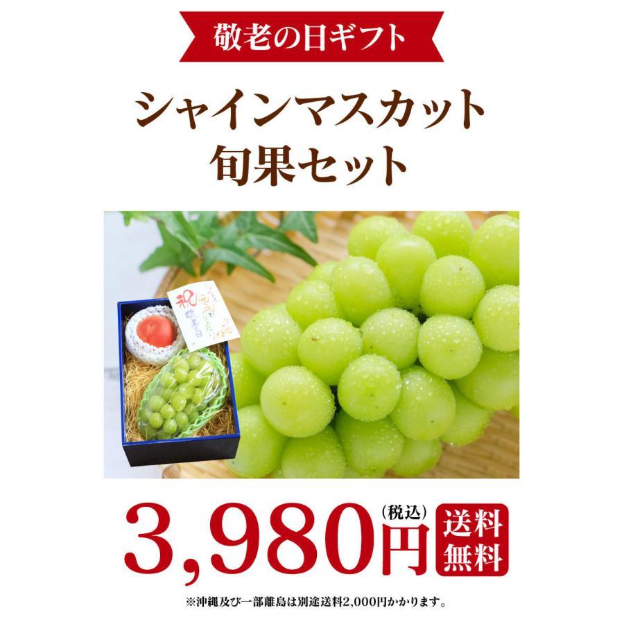 シャインマスカット旬果セット送料無料フルーツギフト果物<お届け:2021年9月14日〜9月19日着>大嶌屋(おおしまや)|oshimaya-1991|03