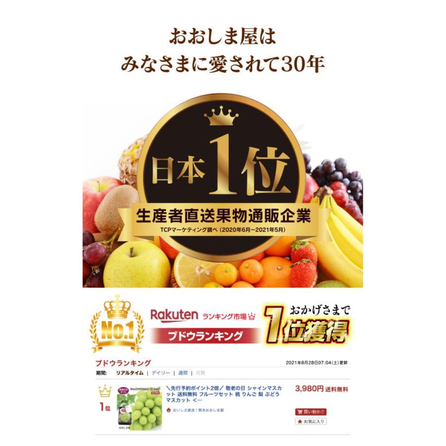 シャインマスカット旬果セット送料無料フルーツギフト果物<お届け:2021年9月14日〜9月19日着>大嶌屋(おおしまや)|oshimaya-1991|04