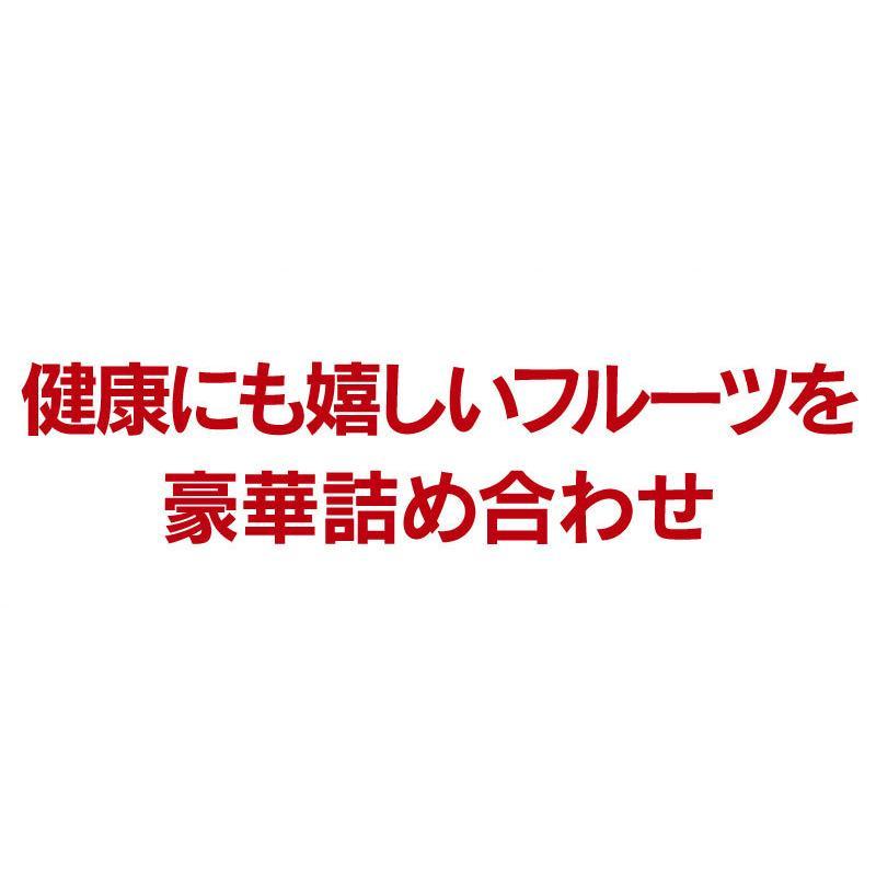 シャインマスカット旬果セット送料無料フルーツギフト果物<お届け:2021年9月14日〜9月19日着>大嶌屋(おおしまや)|oshimaya-1991|05