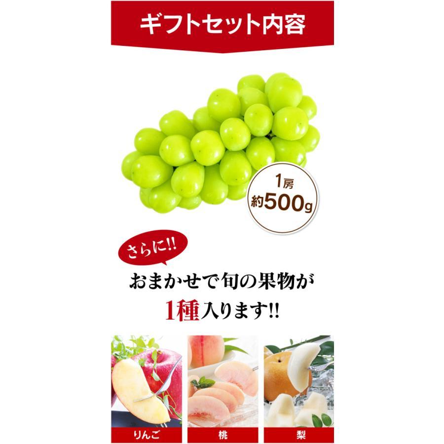シャインマスカット旬果セット送料無料フルーツギフト果物<お届け:2021年9月14日〜9月19日着>大嶌屋(おおしまや)|oshimaya-1991|06