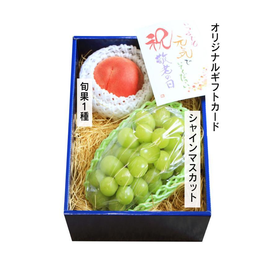 シャインマスカット旬果セット送料無料フルーツギフト果物<お届け:2021年9月14日〜9月19日着>大嶌屋(おおしまや)|oshimaya-1991|07
