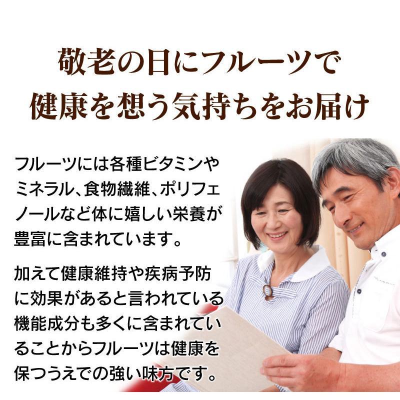 シャインマスカット旬果セット送料無料フルーツギフト果物<お届け:2021年9月14日〜9月19日着>大嶌屋(おおしまや)|oshimaya-1991|10