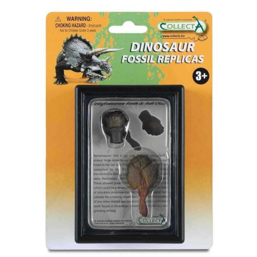 ジュラシックワールド おもちゃ フィギュア 恐竜 CollectA Tooth & Tail Club of Ankylosaurus Box Set 輸入品