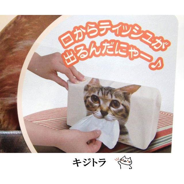ティッシュケース リアル猫 フェイス猫 猫顔 ティッシュカバー ティッシュボックスカバー おしゃれ(猫グッズ 猫 雑貨 ねこ ネコ 猫柄 ねこ雑貨 ギフト包装無料) osyarehime 06
