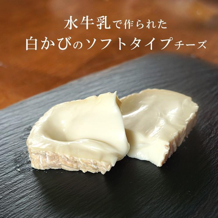 乳種や産地が異なる、白カビ チーズ 食べ比べ セット(カザティカ、ランゲリーノ、シャウルス ハーフ) 毎週水・金曜日発送|otokonodaidokoro|05