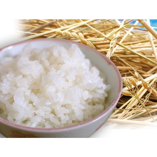 新米令和2年度愛知県産音羽米 無農薬白米9kg(4.5kg×2袋)|otowamai|02