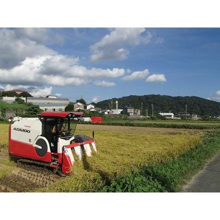新米令和2年度愛知県産音羽米 無農薬白米9kg(4.5kg×2袋)|otowamai|04