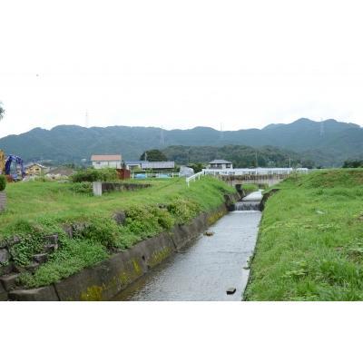 新米令和2年度愛知県産音羽米 無農薬白米9kg(4.5kg×2袋)|otowamai|05