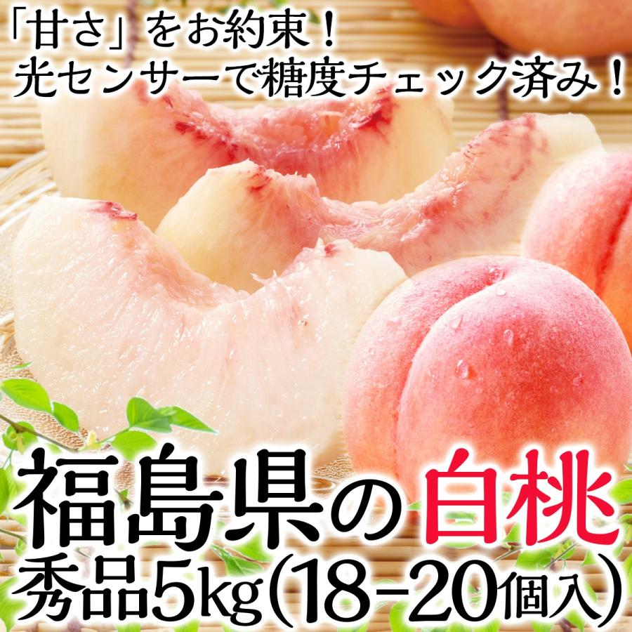 条件付き送料無料 秀品以上の甘い桃をお約束 福島県産 白桃 18〜20玉 常温 日本未発売 品種はおまかせ 5kg 世界の人気ブランド