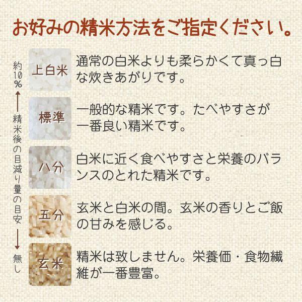 ヒノヒカリ(小川農園) 20kg 令和2年 滋賀県産 近江米 送料無料 - 道の駅草津 oumitokuichi 04