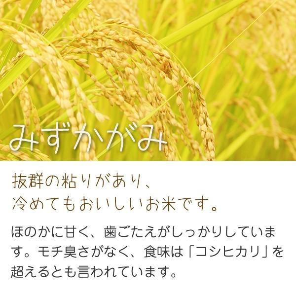 単一原料米 100%みずかがみ 環境こだわり米 みずかがみ(山本農産) 20kg 令和2年 滋賀県産 近江米 - 道の駅草津|oumitokuichi|02