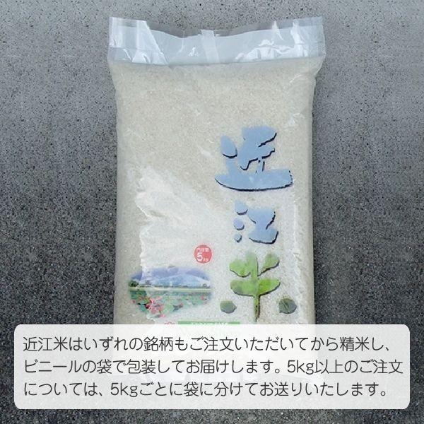 単一原料米 100%みずかがみ 環境こだわり米 みずかがみ(山本農産) 5kg 令和2年 滋賀県産 近江米 - 道の駅草津|oumitokuichi|04