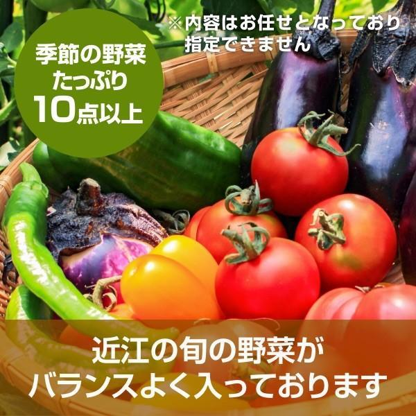 滋賀県から旬の野菜お届け!野菜詰め合わせセット 10種以上 滋賀県産 野菜セット - 道の駅草津|oumitokuichi|02