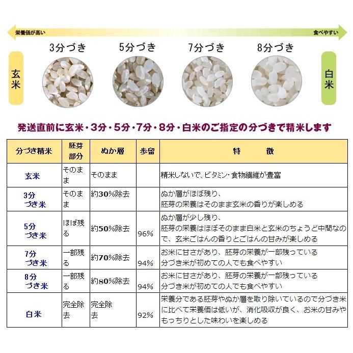 令和2年産 2kg精米 特別栽培米有機肥料 岐阜 飛騨下呂産 銀の朏(みかづき)   |owarinokomegura|02