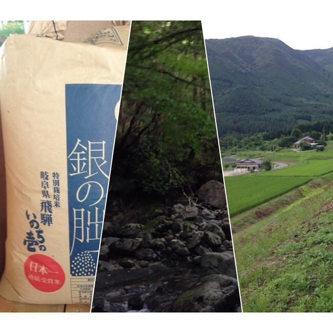 令和2年産 2kg精米 特別栽培米有機肥料 岐阜 飛騨下呂産 銀の朏(みかづき)   |owarinokomegura|08