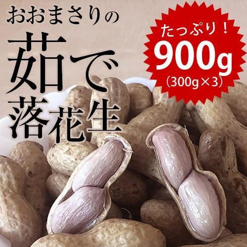 超人気 専門店 日本メーカー新品 新豆 2020年産 千葉県産 ゆで落花生 おおまさり 900g