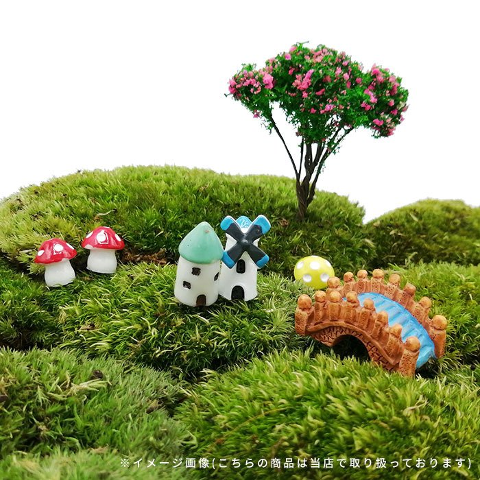 DIY ミニチュア きのこ 赤 黄 青 紫 緑 ピンク ドールハウス インテリア 樹脂 盆栽 箱庭 苔リウム テラリウム ガーデン 風景 装飾 小道具 DIY p-comfort 06