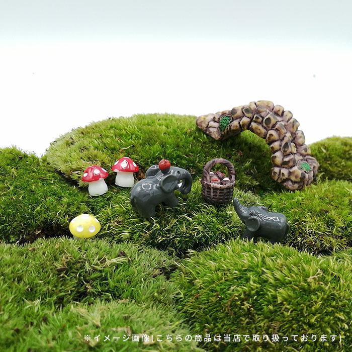 DIY ミニチュア きのこ 赤 黄 青 紫 緑 ピンク ドールハウス インテリア 樹脂 盆栽 箱庭 苔リウム テラリウム ガーデン 風景 装飾 小道具 DIY p-comfort 07
