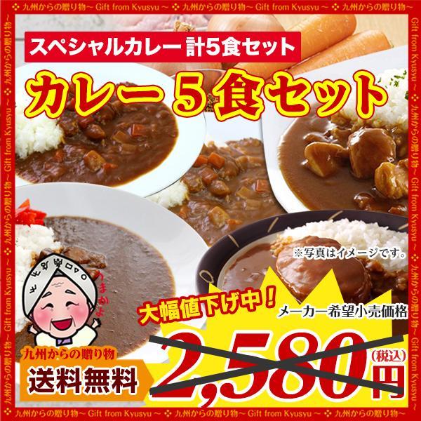 5食カレーセット