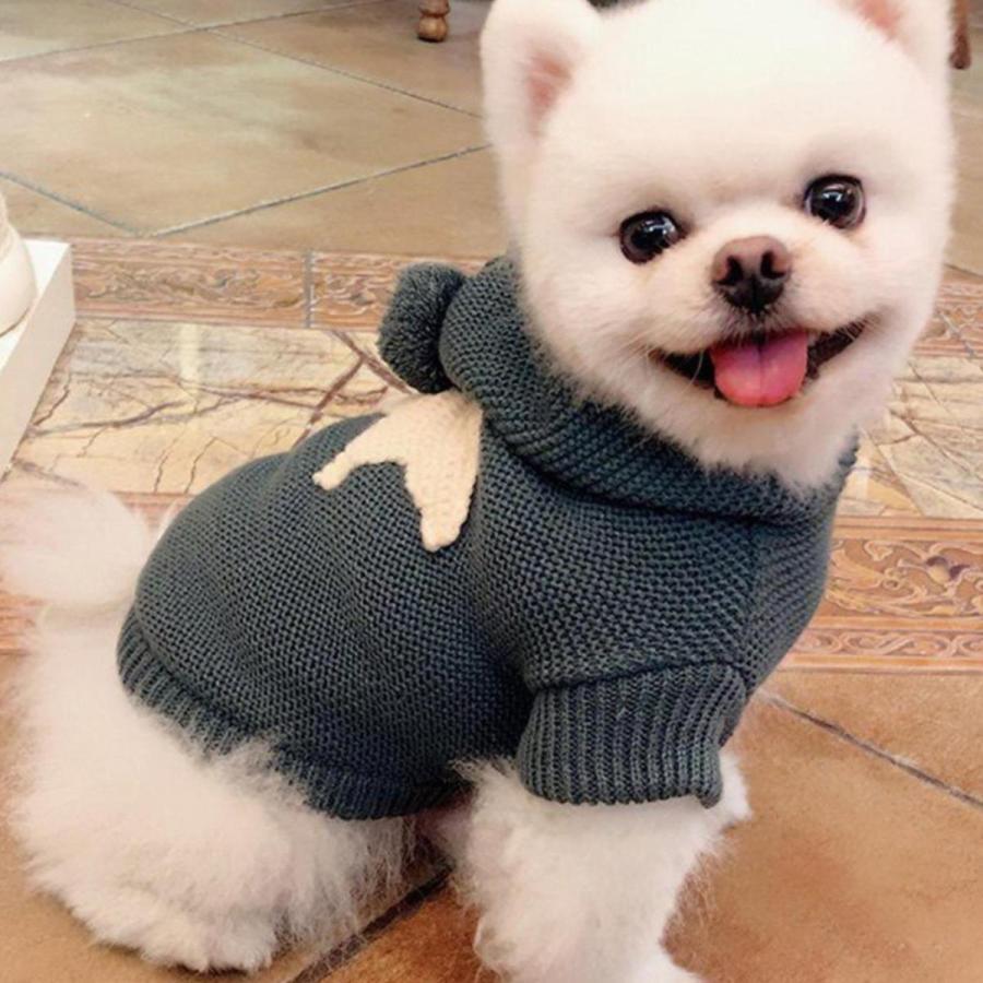 犬の服 犬服 セーター パーカー 編み 犬のニット かわいい ドッグウェア ドッグクローズ トイプードル チワワ ポメラニアン 小型犬 送料無料 メール便対応|panni-fashion|10