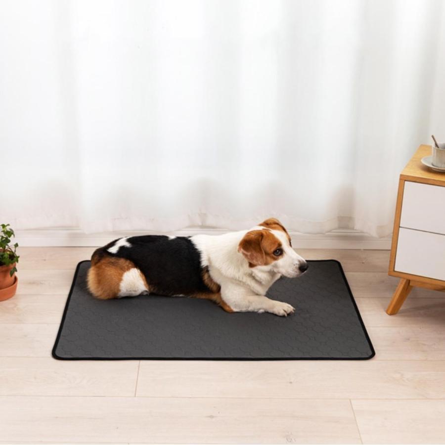 犬用 トレーニングパッド 犬シーツ ペットシーツ 洗える トイレ下敷きマット おしっこパッド 速乾 洗える 選べる 3サイズ2カラー Mサイズ Lサイズ)|panni-fashion|02