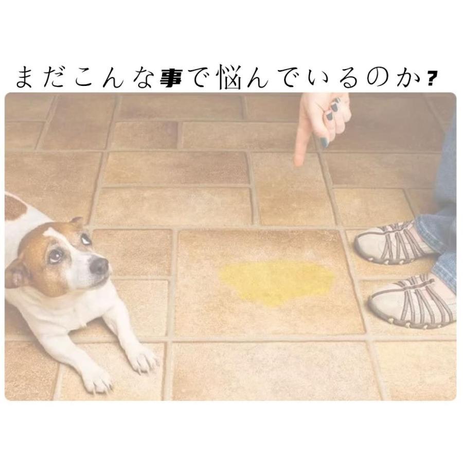 犬用 トレーニングパッド 犬シーツ ペットシーツ 洗える トイレ下敷きマット おしっこパッド 速乾 洗える 選べる 3サイズ2カラー Mサイズ Lサイズ)|panni-fashion|06