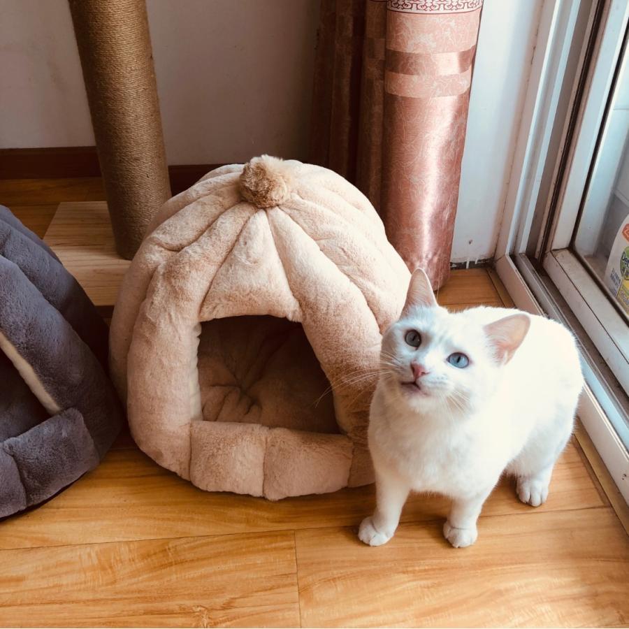 ペットベッド 犬 猫 ふわふわ 暖か ペットハウス 猫ベッド ペット用 ペットハウス ペットベッド ドーム型 小型犬 マット付き 室内用  秋 冬 送料無料|panni-fashion|06