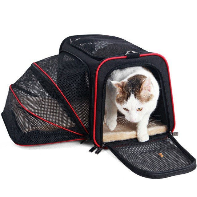 ペット キャリー 拡張可能 通気性抜群 旅行・散歩・通院・お出かけに便利 折りたたみ 小型犬 猫 車載・スリング・手持ち 多機能ペットバッグ S/Mサイズ Panni|panni-fashion|02