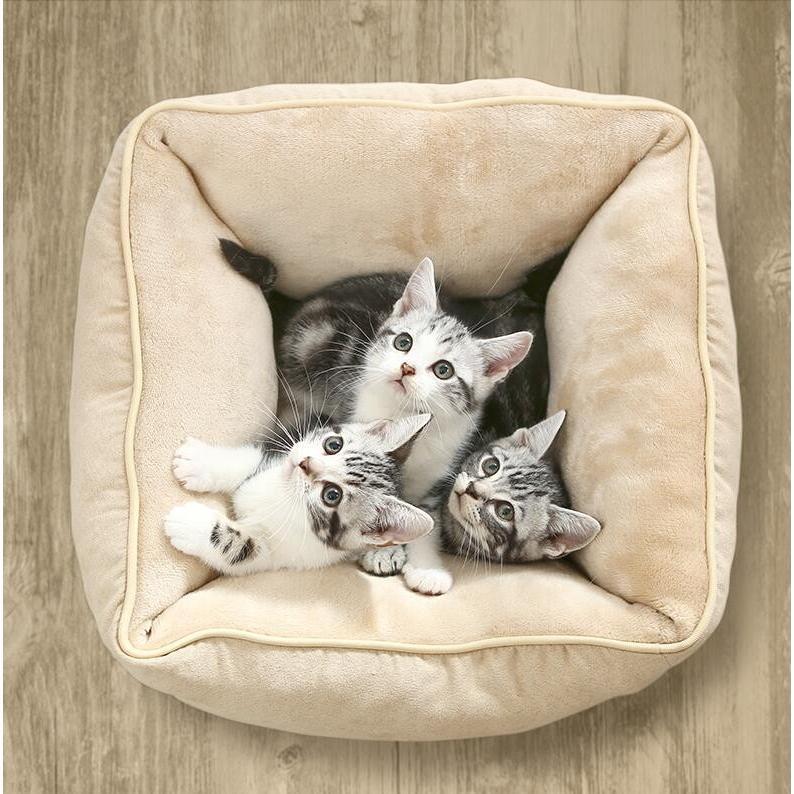 ペットベッド 猫ベッド 冬用 犬ベッド あったか ペット用 クッション 保温防寒 崩れにくい 小型犬 猫用ふわふわ 暖かい キャットハウス 34*34*23 送料無料|panni-fashion|14