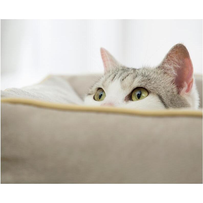 ペットベッド 猫ベッド 冬用 犬ベッド あったか ペット用 クッション 保温防寒 崩れにくい 小型犬 猫用ふわふわ 暖かい キャットハウス 34*34*23 送料無料|panni-fashion|09