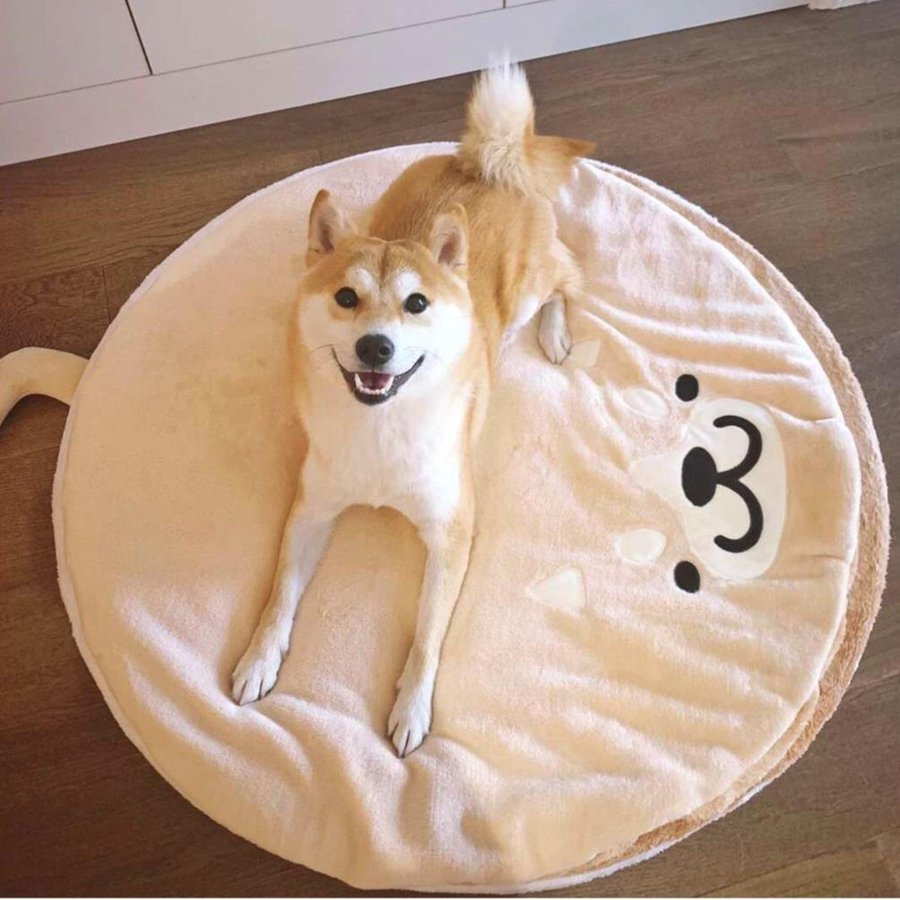ペット ベッド 犬用 ベッド クッション ベッドクッション 柴犬 大人気 もこもこ ふわふわ 柔らかい 月3日再入荷 防寒保温 送料無料|panni-fashion|08