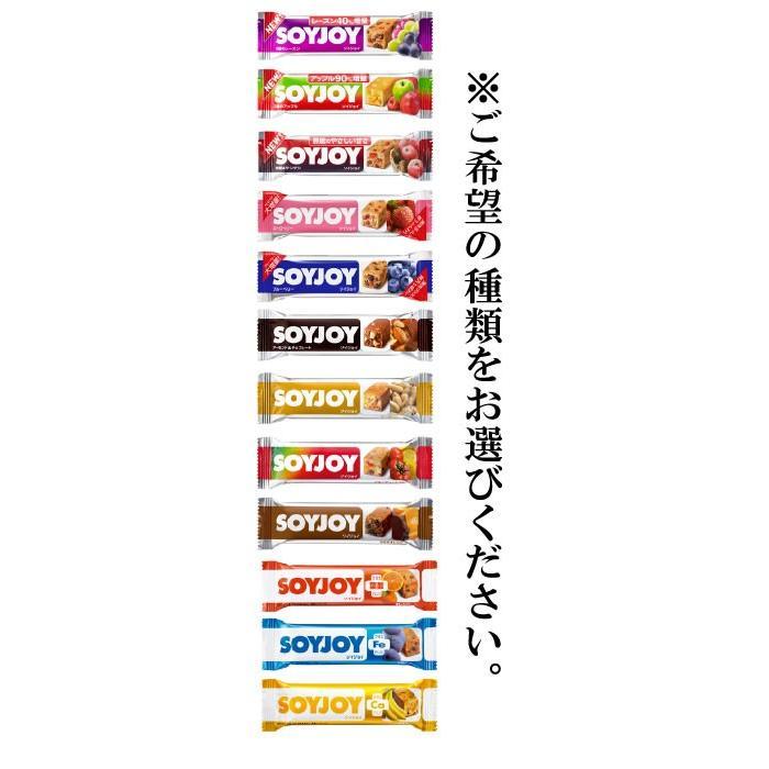 SOYJOY ソイジョイ 12本 papamama