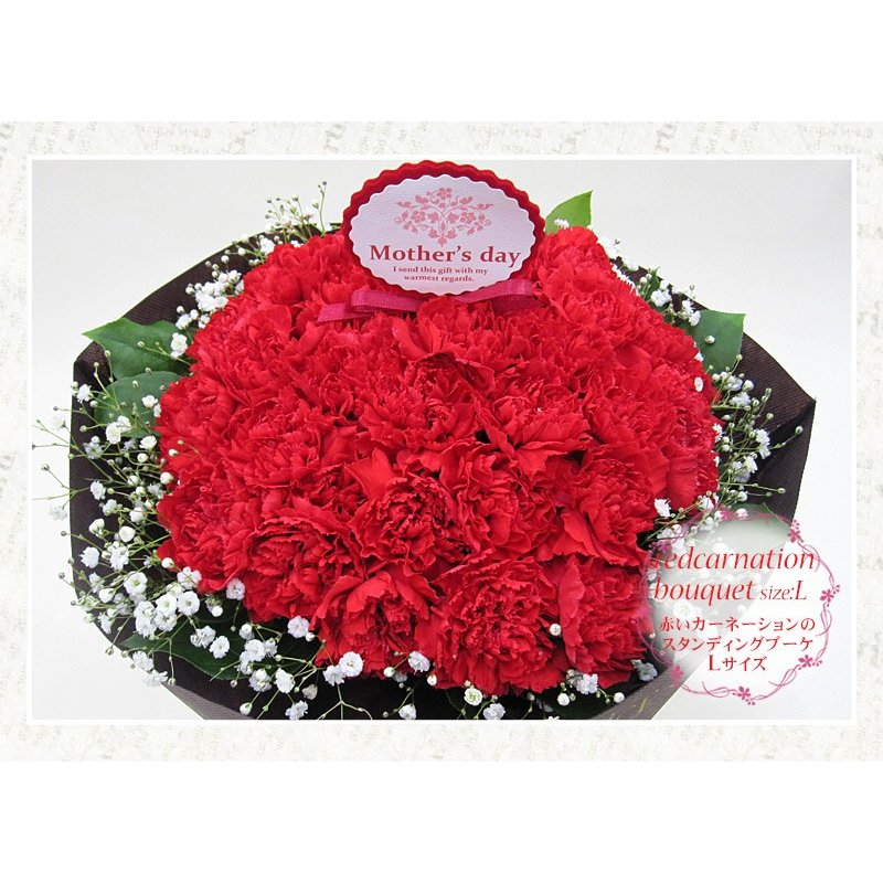 母の日 花 ギフト 母の日ギフト 母の日 花 プレゼント 定番 お洒落 花瓶が要らない花束 赤いカーネーションのスタンディングブーケ Lサイズ 36本|paravoce|02