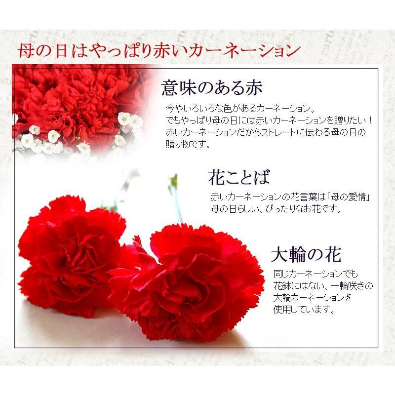 母の日 花 ギフト 母の日ギフト 母の日 花 プレゼント 定番 お洒落 花瓶が要らない花束 赤いカーネーションのスタンディングブーケ Lサイズ 36本|paravoce|04