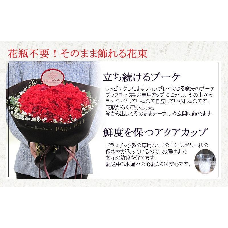 母の日 花 ギフト 母の日ギフト 母の日 花 プレゼント 定番 お洒落 花瓶が要らない花束 赤いカーネーションのスタンディングブーケ Lサイズ 36本|paravoce|05