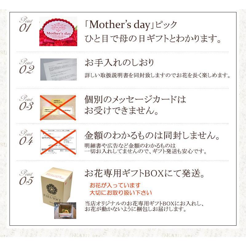 母の日 花 ギフト 母の日ギフト 母の日 花 プレゼント 定番 お洒落 花瓶が要らない花束 赤いカーネーションのスタンディングブーケ Lサイズ 36本|paravoce|08