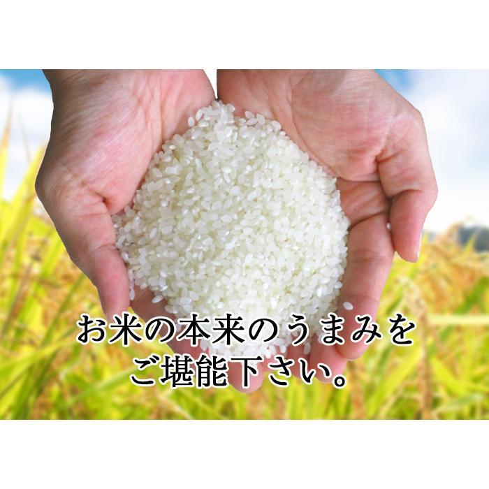 セール中 米 お米 新米 米 白米 精米 令和2年産 日本のお米 10kg  ブレンド米 国内産 10kg 毛利米穀 ブレンド 10キロ 送料無料 即日発送|park001|05
