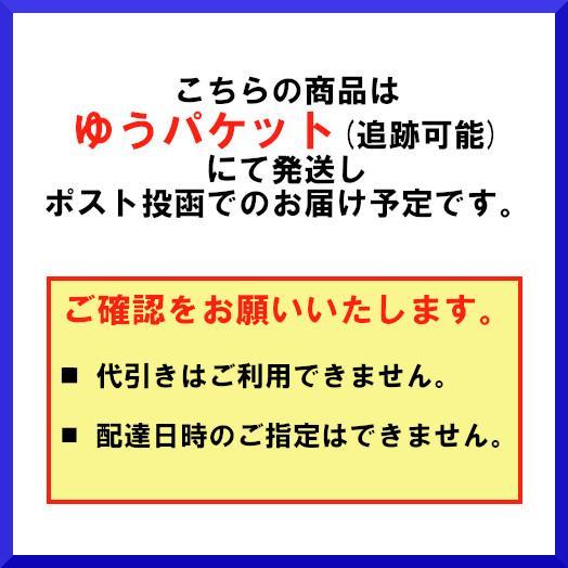 手甲 6枚コハゼ 日本製 1双組 【送料無料!メール便対応となります】#650|passion-work|03